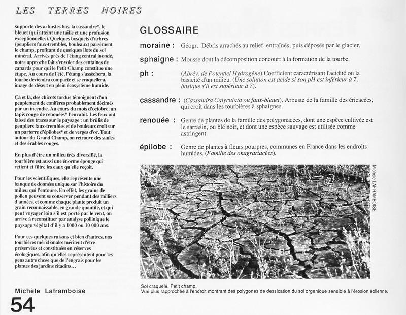 Michèle Laframboise, Les terres noires, Ciel variable 2, p.54. © Tous droits réservés