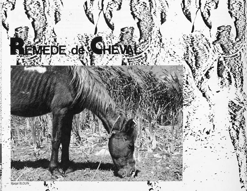 Photo: Marcel Blouin, Remède de cheval, Ciel variable 2, p.62. © Tous droits réservés