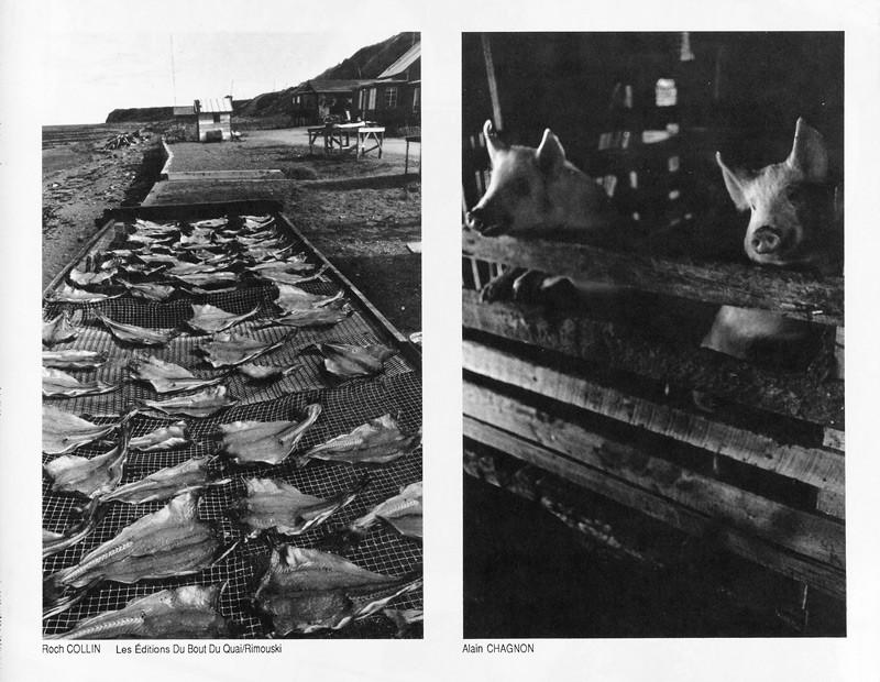 Photo: Roch Collin et les Éditions du Bout du Quai, Rimouski / Alain Chagnon, Sans titre, Remède de cheval, Ciel variable 2, p.63. © Tous droits réservés
