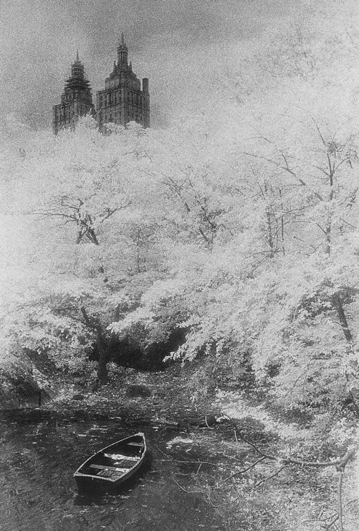 Daniel-Henri Poirier, Central Park, 63rd, N. Y. © Daniel-Henri Poirier