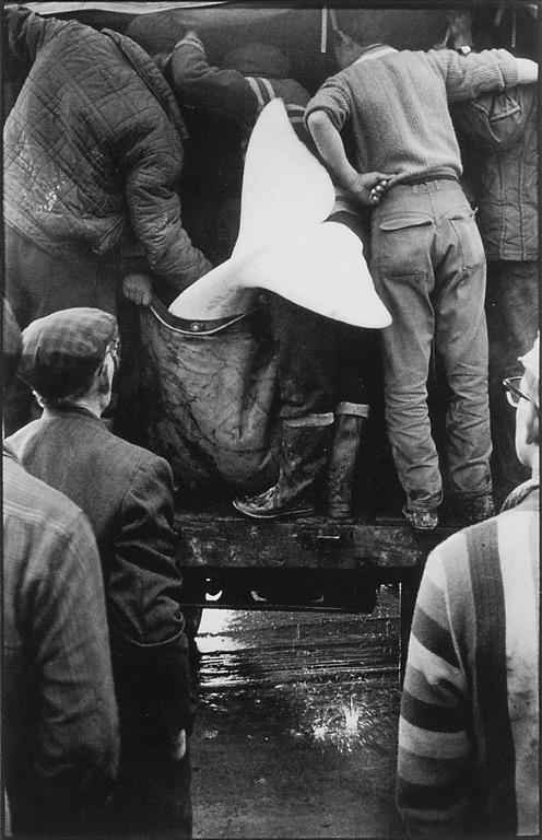 Michel Brault, Photo de tournage du film Pour la suite du monde, de Pierre Perrault, collection Cinémathèque québécoise. ©Michel Brault