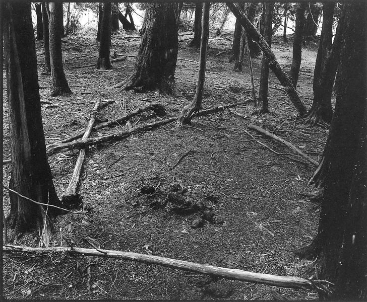 Normand Rajotte, Sans titre (de la série Dans les coins oubliés, à la recherche des dieux tranquilles), 1981-1988. ©Normand Rajotte