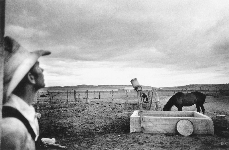 Larry Towell, Région de La Botella (Zacatecas, Mexique). © Larry Towell