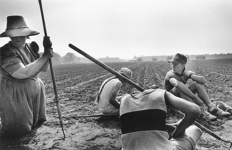 Larry Towell, La famille Wieler au repos dans un champ (West Lorne, Ontario). ©Larry Towell