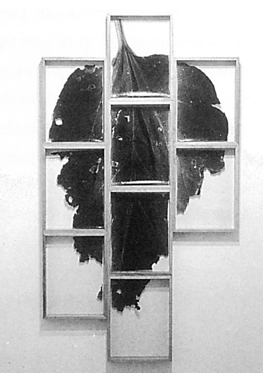 Roberto Pelligrinuzzi, Trophée #230, 1991, épreuves argentiques, 39 x 32 x 4.5 cm, courtoisie de la Galerie Brenda Wallace. © Roberto Pellegrinuzzi