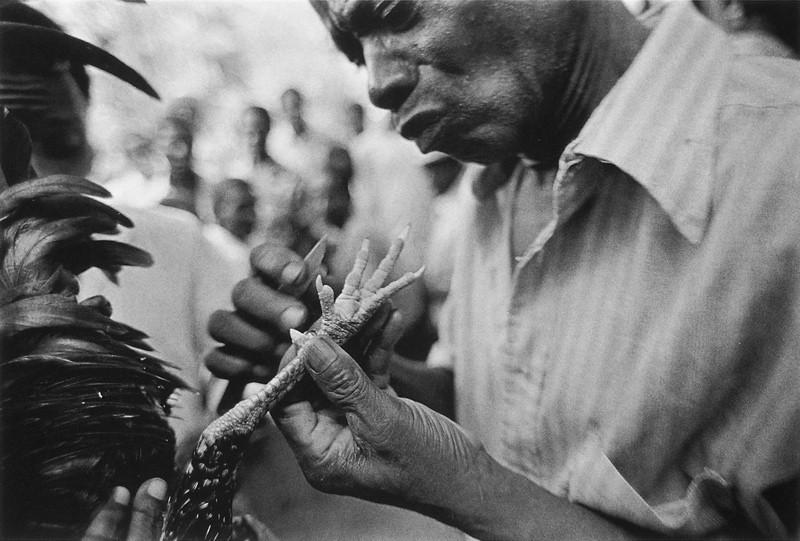 Benoît Aquin, Gaguerre, Haïti (de la série Haiti Chérie), 1989, 61 x 91.5 cm © Benoît Aquin