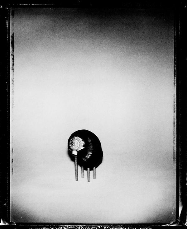 William Eakin, Sans titres (de la série Tabletop), épreuves argentiques. © William Eakin