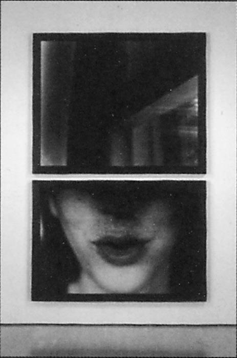 Sylvie Readman, Bruissements (diptyque), 1993, émulsions photographiques, 320 x 206.5 cm. © Sylvie Readman