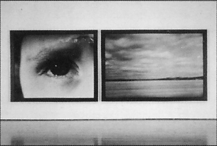 Sylvie Readman, Percée (diptyque), 1993, émulsions photographiques, 169.5 x 465.5 cm. © Sylvie Readman