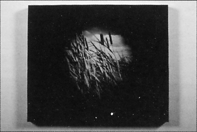 Sylvie Readman, Suite écliptique, (élément d'une série), 1993, 57 x 70 cm. © Sylvie Readman