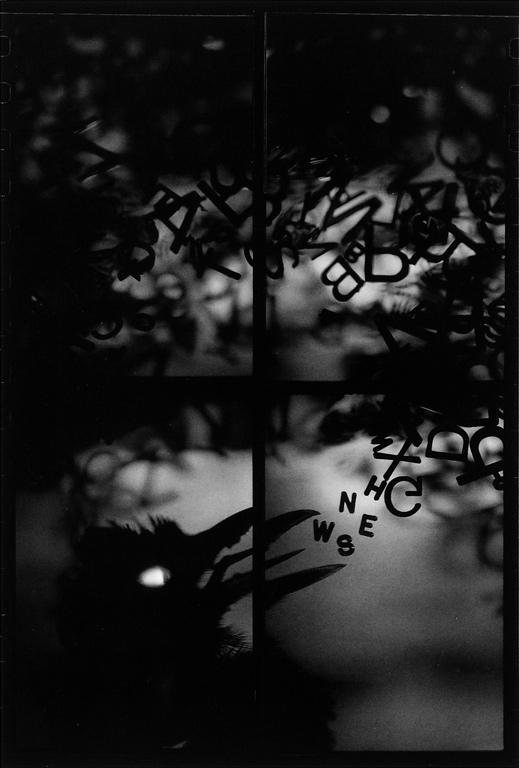 Randy Koroluk, Songbird, 1994, 70 x 48.5 cm. ©Randy Koroluk