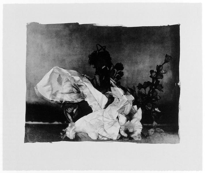 Ginette Bouchard, Floris Umbra n° I, 1995, 66 x 87 cm, émulsions au palladium sur papier Rives BFK. ©Ginette Bouchard