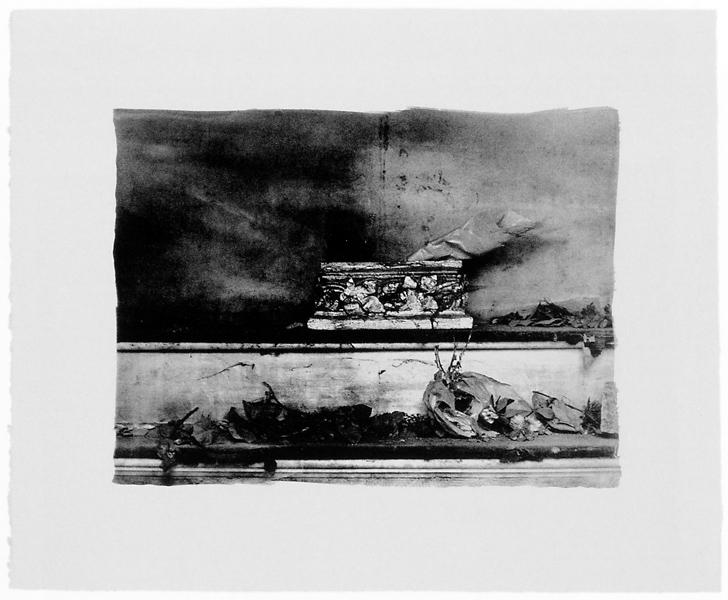 Ginette Bouchard, Floris Umbra n° II, 1995, 66 x 87 cm, émulsions au palladium sur papier Rives BFK. ©Ginette Bouchard
