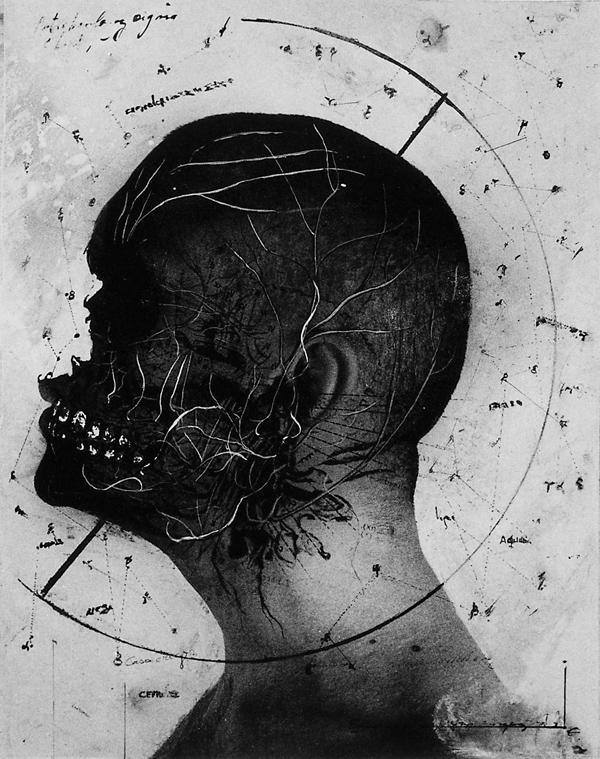 Paul Lowry, Anatomical Head Study, 1990, 36 x 44 cm. ©Paul Lowry
