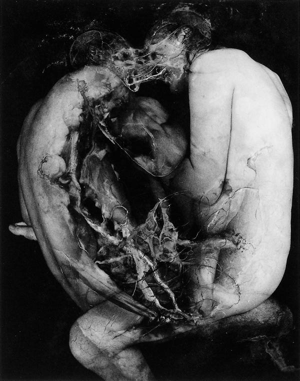 Paul Lowry, Alba, 1993, 36 x 42 cm. ©Paul Lowry