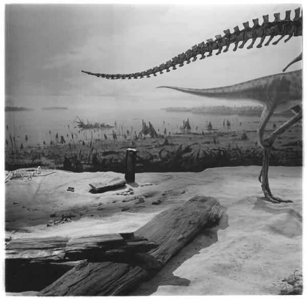 Richard Baillargeon, extrait de la série Terres austères, 1990-1996. © Richard Baillargeon