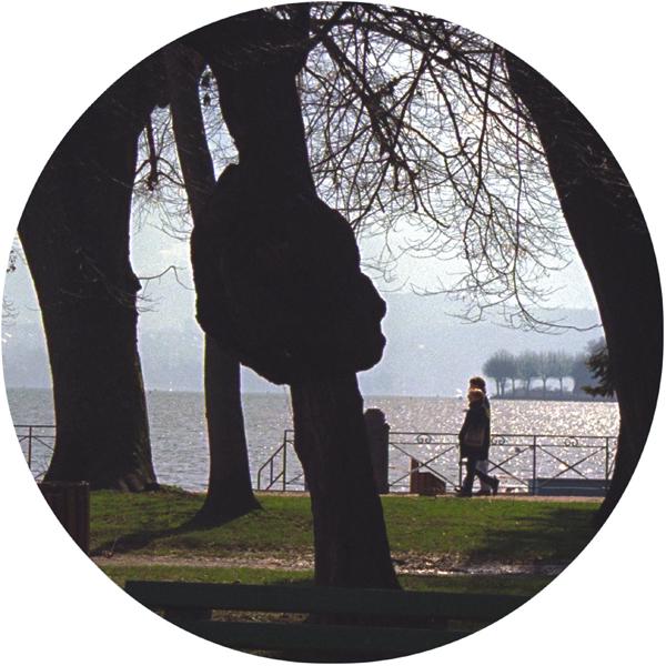 Nicole Jolicoeur, Image d'une ville. Corps de l'image, 1997