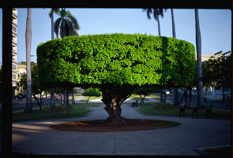 Manuel Piña, On Monuments, 11 photographs, digital color prints, 40 x 60 in., 2000, Courtesy Marvelli Gallery New York. ©Manuel Piña