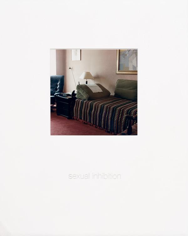 Sorel Cohen, The Wounds of Experience, 1995-1996, 9 épreuves couleur sous verre gravé, 50 x 40 cm, collection du Musée des beaux-arts de Montréal. Photo: Brian Merrett, MBAM. © Sorel Cohen/SODRAC (2010)