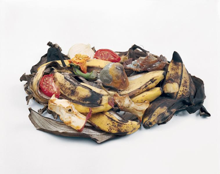 Louis Joncas, Detritus, 1999-2003, colour prints, 76.5 x 102 cm. © Louis Joncas