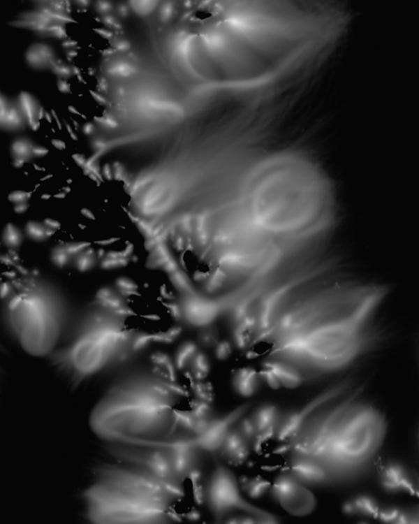 Marie-Jeanne Musiol , prélèvements : Dryoptéride (détails), dimensions variables. électrophotographie, 2005. © Marie-Jeanne Musiol
