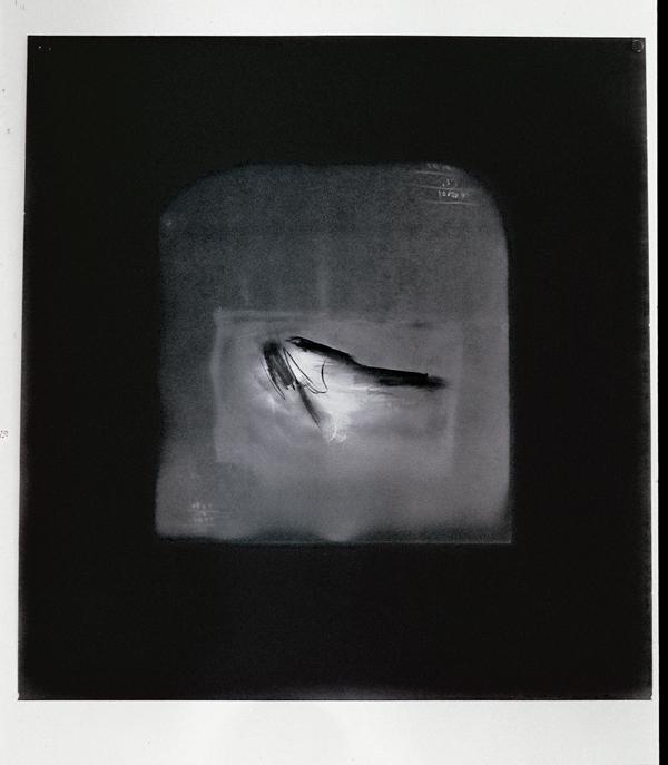 Paul Lacroix, Sans titre (détail), 2002, photogramme sur papier baryté et craie noire, 120 x 100 cm. © Paul Lacroix