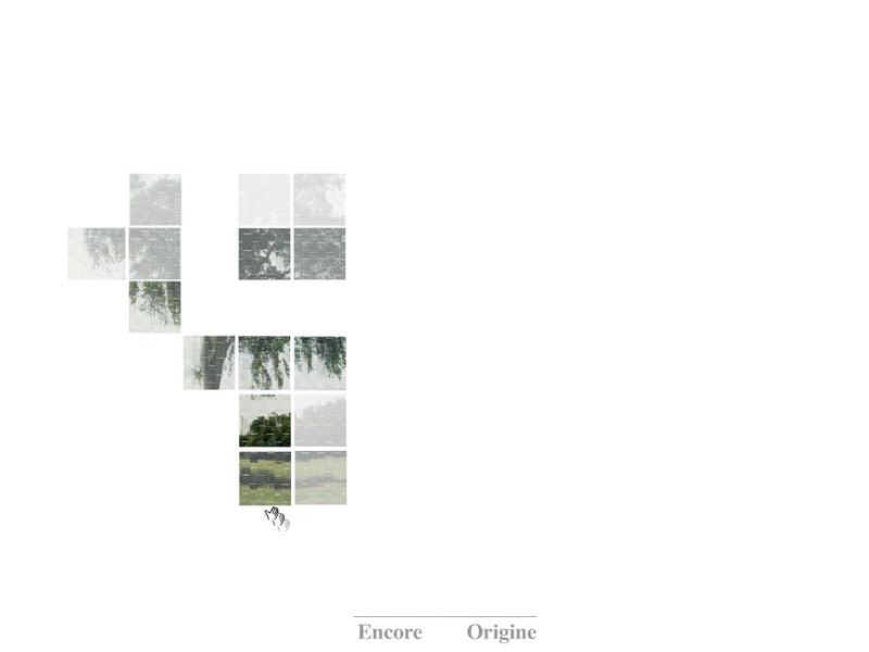 Karen Trask, l'orme (détail), 2006, conception et écriture : Karen Trask, animation flash : Patricia Reed, photographie : Paul Litherland, voix : Karen Trask. © Karen Trask