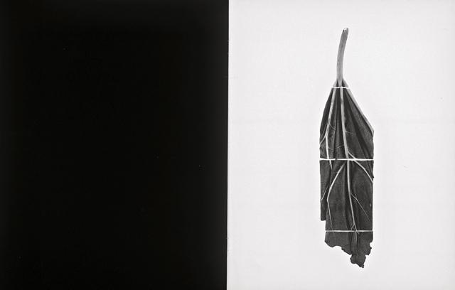 CV23 - 1993