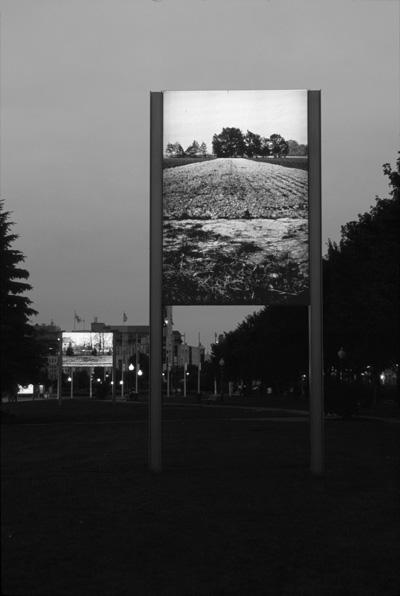 Marie-Jeanne Musiol, Camp (périphérie): les marais, Auschwitz-Birkenau, Pologne, 1994-2002, 4,68 x 3,90 m, Vieux-Port, MAU, Montréal. © Marie-Jeanne Musiol
