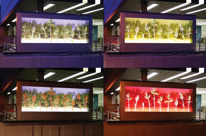 Roberto Pellegrinuzzi, Espace vert (aperçu de la programmation), 2007, 457 x 213 cm, programme d'art public de la Ville de Montréal, Centre communautaire intergénérationnel d'Outremont. © Roberto Pellegrinuzzi