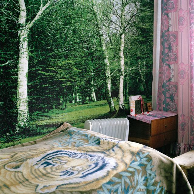 Olga Chagaoutdinova, Tiger and a Forest in the Bedroom, 2006, de la série Domestic Landscape, épreuve chromogénique, 61 x 61 cm. © Olga Chagaoutdinova