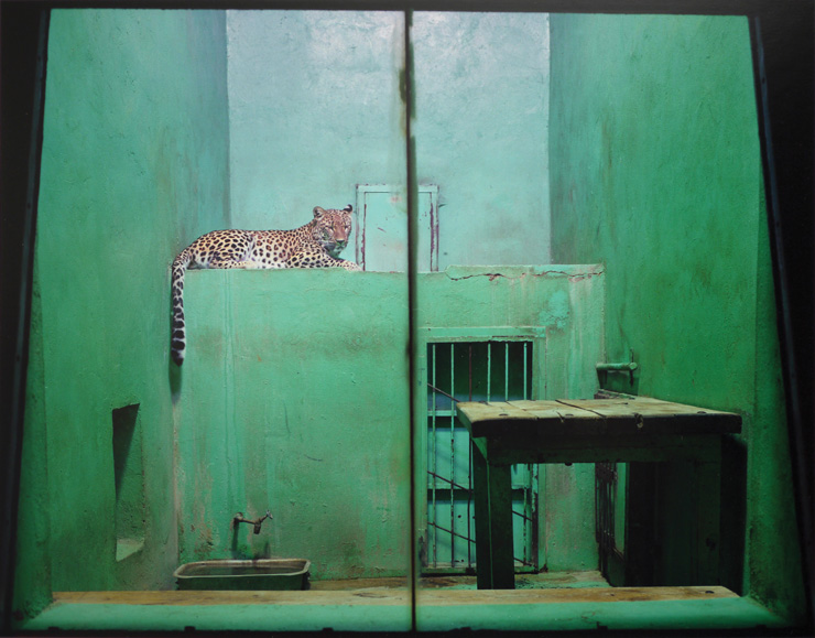 Volker Seding, Leopard, Usti, Czechoslovakia, 1992, épreuve chromogénique / c-print, 23,4 x 30 cm, coll. Ryerson Gallery and Research Centre, image © Estate of Volker Seding, permission de / courtesy of Stephen Bulger Gallery