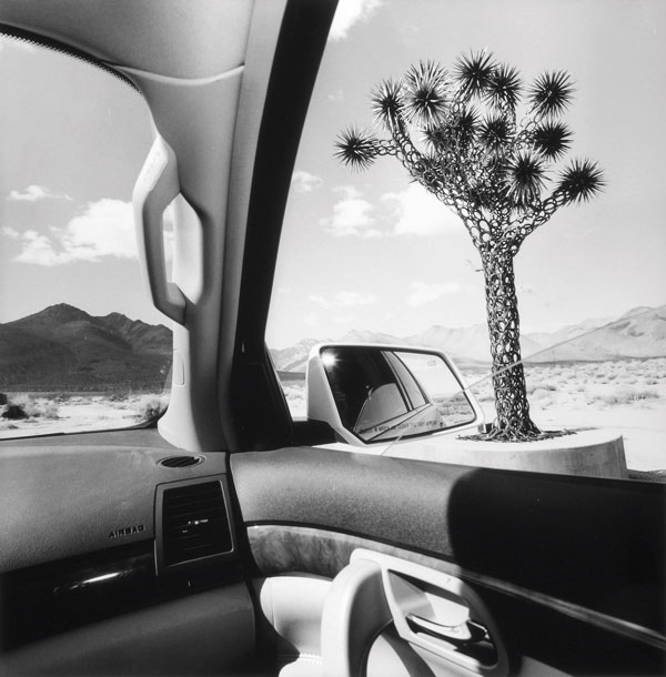 Lee Friedlander, California, 2008, from the series America by Car, 1995-2009, gelatin silver print, 38,1 x 38,1 cm, courtesy Fraenkel Gallery, San Francisco. © Lee Friedlander