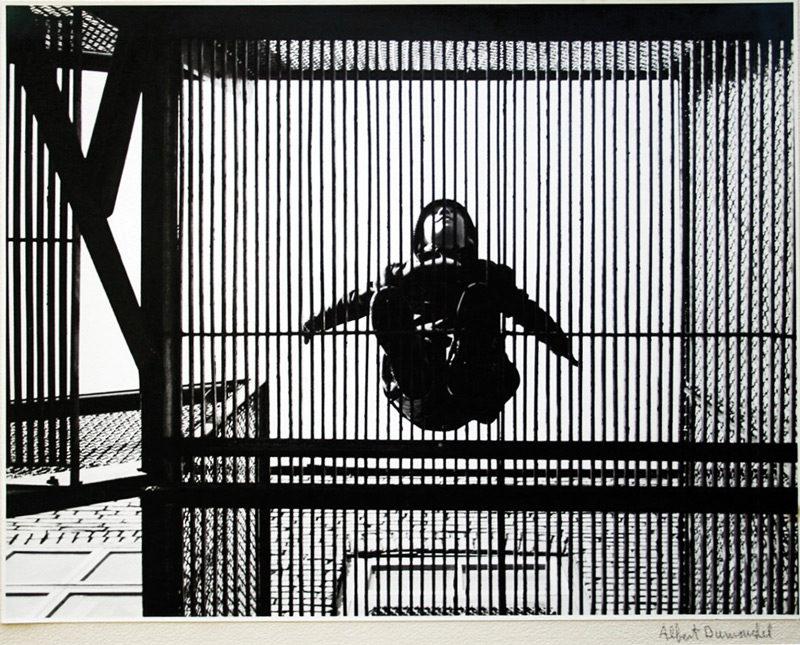 Albert Dumouchel, Sans titre ou L'oiseau en cage, v.1953, épreuve argentique / gelatin silver print, 27,3 x 35 cm. © Albert Dumouchel