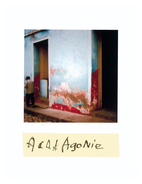 Serge Emmanuel Jongué, de la série / from the series Undressed Passion, 2000-2003, Agonie, photographie Polaroïd + écriture / Polaroid photographs + writing, 28 x 22 cm . © Serge Emmanuel Jongué