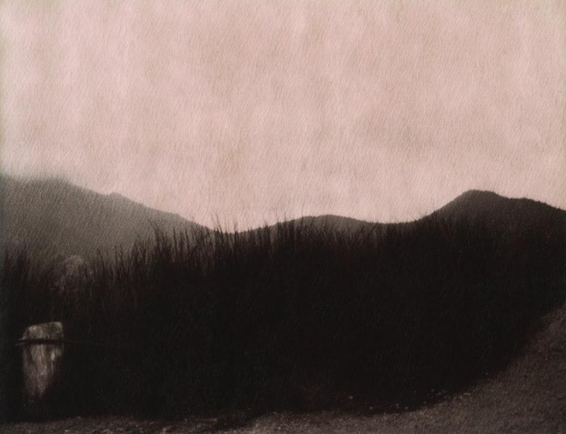 Flora, Tasmanie, 2009, de la série Isthme, premier volet d'une recherche intitulée L'ailleurs de l'autre, polaroid. © Flora