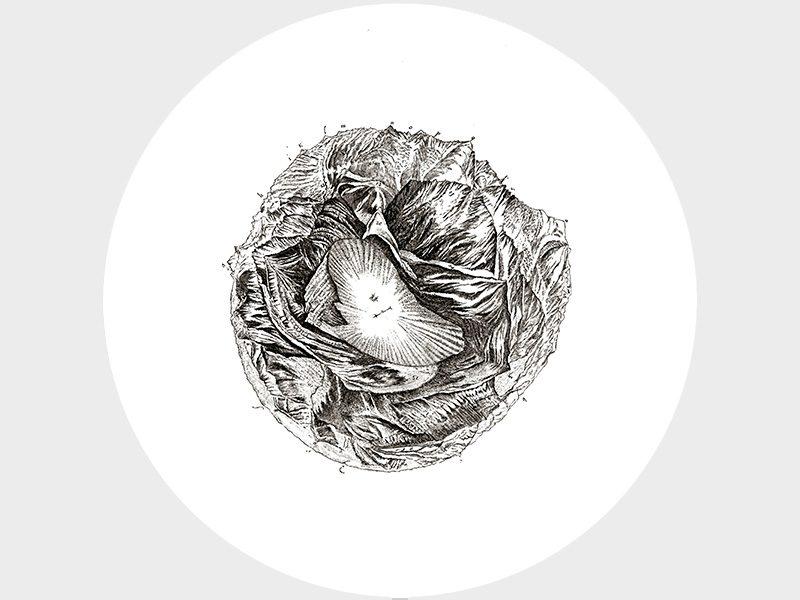 Vue circulaire des montagnes qu'on découvre du sommet du glacier de Buet (1776), imaginée par Horace-Bénédict de Saussure et dessinée par Marc-Théodore Bourrit en / conceived by HoraceBénédict de Saussure and drawn by Marc-Théodore Bourrit in 1776.