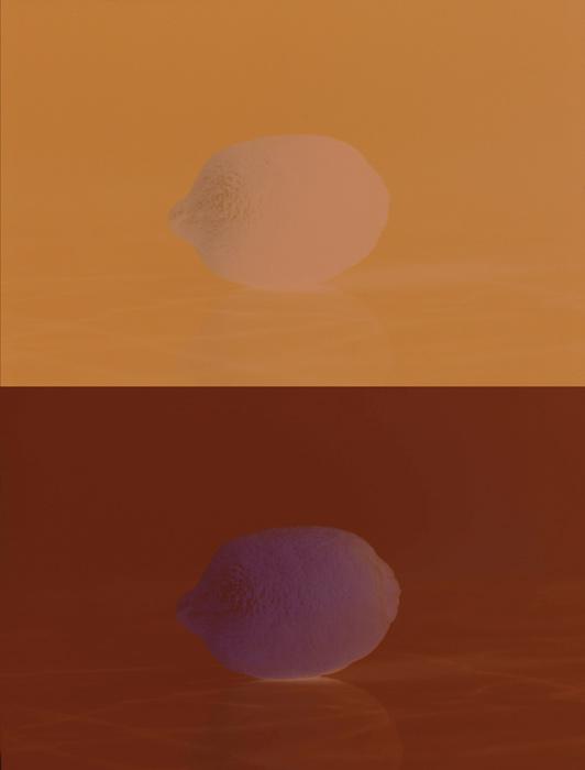 Lorna Bauer et Jon Knowles, Film/Unfilm, 2014, double projection de diapositives couleur / double projection of colour slides, 80 positifs / positive, 80 négatifs / negative