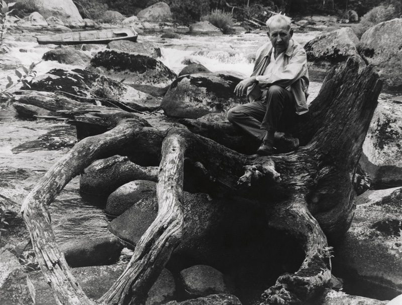 Béla F. Egyedi, Self-portrait sitting on weathered tree stump / Autoportrait assis sur la souche d'un arbre déraciné, ca. / vers 1975, 20 x 25 cm, Gelatin silver prints from the Egyedi Fonds / Épreuves argentiques provenant du Fonds Egyedi, McCord Museum / Musée McCord
