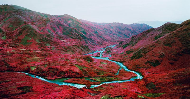 Richard Mosse, Love Is The Drug, 2012, digital c-print, 279 × 535 cm, courtesy of the artist and Jack Shainman Gallery, New York
