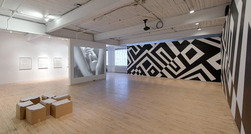 Kathleen Ritter, Camoufleurs, installation view, Battat Contemporary, 2014–15, photo: Paul Litherland
