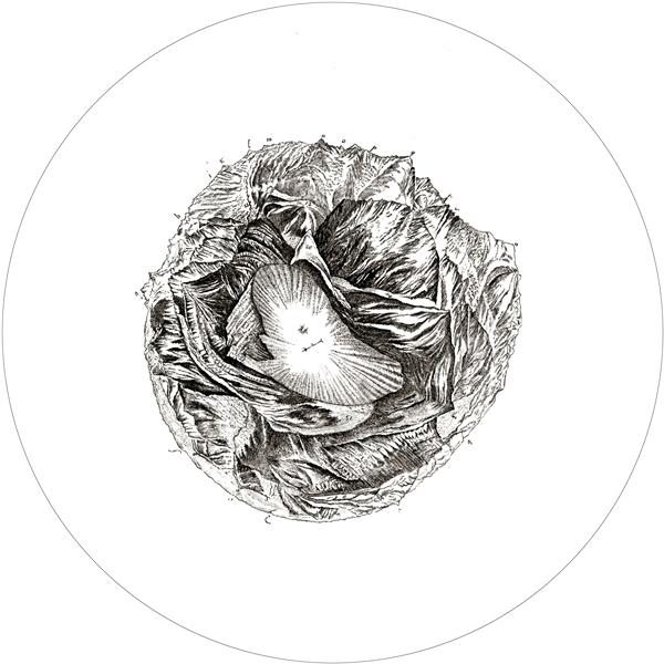 Vue circulaire des Montagnes qu'on découvre du sommet du Glacier de Buet (1776) imaginée par Horace-Bénédict de Saussure et dessinée par Marc-Théodore Bourrit en 1776 Luc Courchesne, L'invention de l'horizon (2013), extrait de l'œuvre interactive, photographie sphérique depuis le sommet du mont Buet