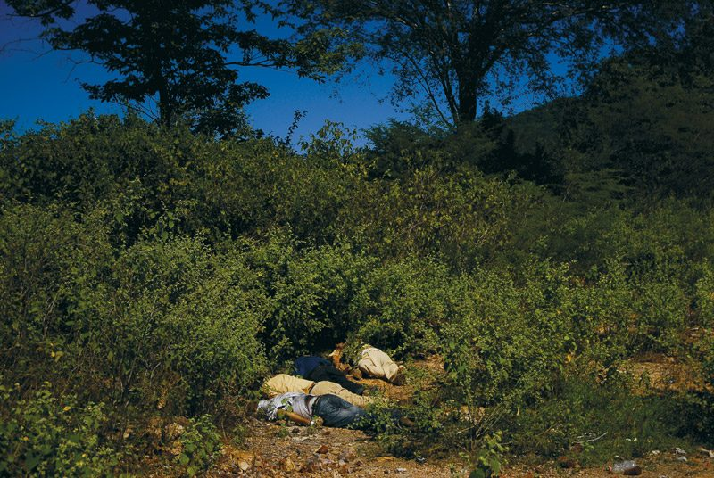Fernando Brito, from the series / de la série Your Steps Were Lost in the Landscape, 2006