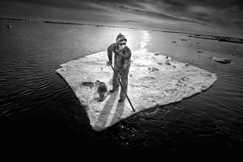 Yoanis Menge, Terre-Neuve, 2014. De la série / from the series HAKAPIK, 2012-2015. 35 épreuves argentiques / 35 gelatin silver prints, 60 × 91 cm ou/or 60 × 163 cm