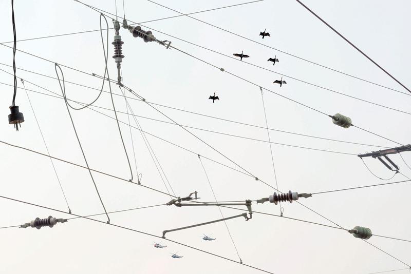 Robert Bean, Études (for Marconi), no. 3, 2014, inkjet prints / épreuves à jet d'encre, 81 × 112 cm