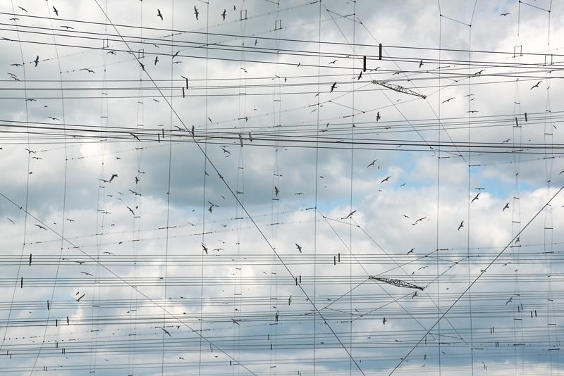 Robert Bean, Études (for Marconi), no. 1, 2014, inkjet prints / épreuves à jet d'encre, 81 × 112 cm
