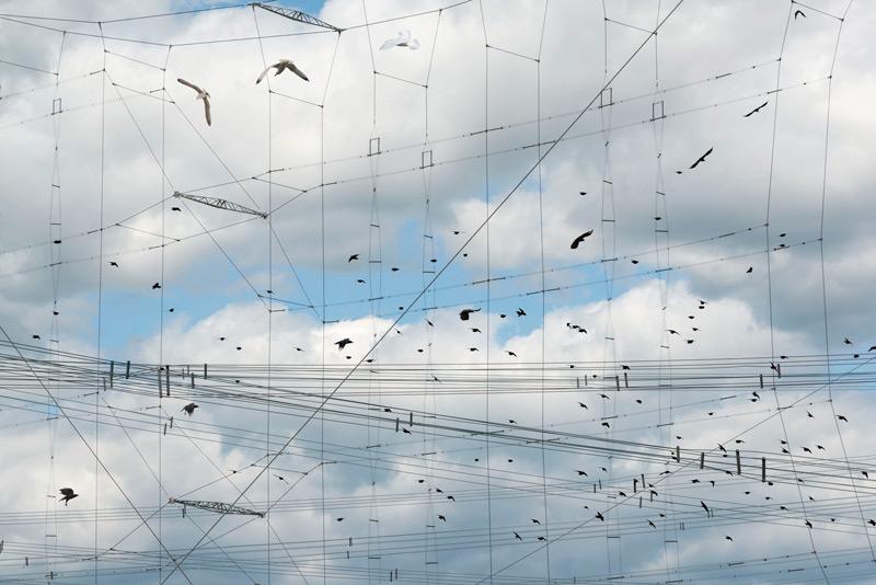 Robert Bean, Études (for Marconi), no. 5, 2014, inkjet prints / épreuves à jet d'encre, 81 × 112 cm