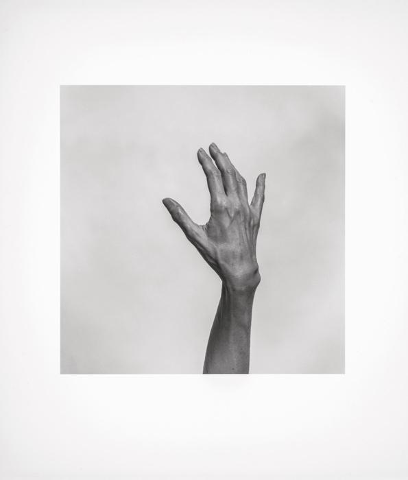 Geneviève Cadieux, Sans titre (Main), 1997, épreuve argentique / silver print 57 × 50 cm. Collection d'art canadien du Musée des beaux-arts de Montréal / The Montreal Museum of Fine Arts.
