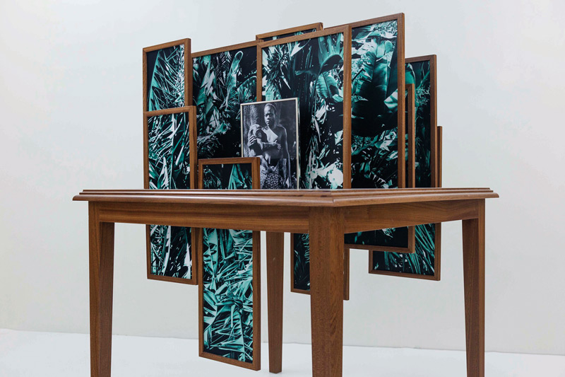Vasco Araújo, Botânica 7, 2012-2014, épreuves numériques et bois / digital prints and wood, 100 × 100 × 120 cm, permission / courtesy Galeria Francisco Fino, Portugal