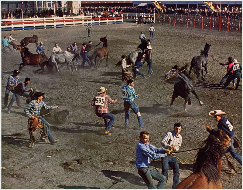 George Hunter, Course de chevaux sauvages, Stampede de Calgary / Wild Horse Race, Calgary Stampede, 1958 épreuve par transfert hydrotypique / dye-transfer print, 51 × 61 cm, permission / courtesy Canadian Heritage Photography Foundation